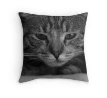 The Grumpy Cat Throw Pillow