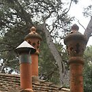 pretty collection of chimney pots, Isle of Porquerolles, France by BronReid