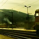 Train is coming by Ivan Litovski