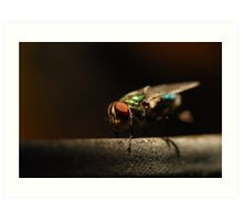 Pretty Pest Art Print