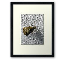 ©NS Laundry Day For Beetle IA. Framed Print