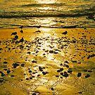 Bronze Shore photo painting by randycdesign