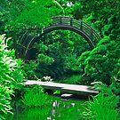 Japanese Garden Bridges photo painting by randycdesign