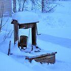 Old Well in Winter by Merja Waters