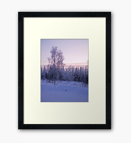 Arctic Afternoon Framed Print