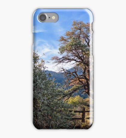 Song Of A Desert Morning iPhone Case/Skin