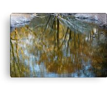 Water Colours. Canvas Print