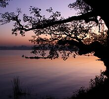 Sunset on lake Tana by EHRETic