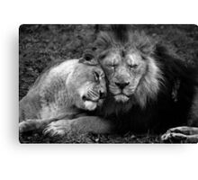 Asiatic Love. Canvas Print