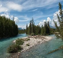 Taking a Bath in the Bow River by Kristin Repsher