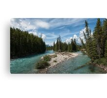 Taking a Bath in the Bow River Canvas Print