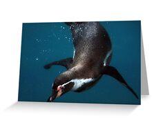 Underwater Penguin Greeting Card
