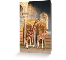 Happiness is a giraffe thing Greeting Card