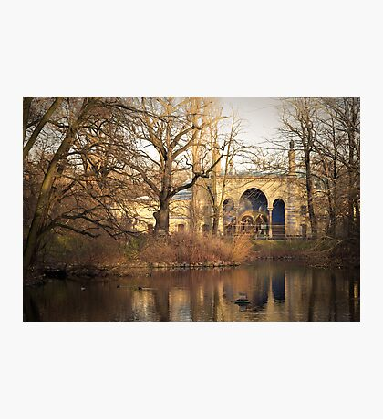 Berlin zoo Photographic Print