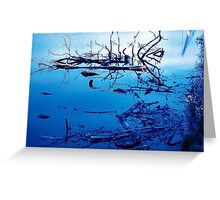 River Tees in Winter Greeting Card