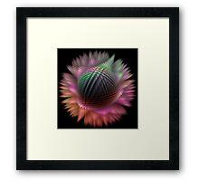 Rainbow Puff Framed Print