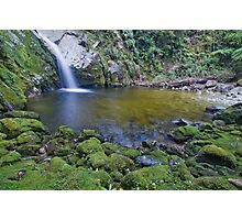 Dorothy Falls, South Westland Photographic Print