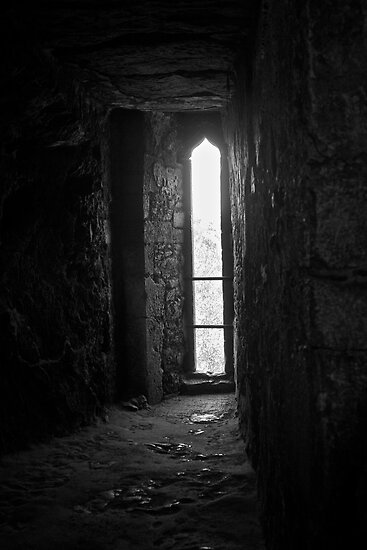 Blarney Castle by emerson