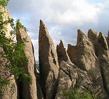 The Needles of South Dakota by Kat Simmons