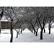 white tunnel Photographic Print