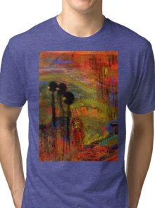 Admiring God's Handiwork I Tri-blend T-Shirt