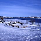 The Saint Lawrence River by Mike Oxley