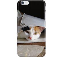 THEA VANCATT - SNEAKY NINJA CAT! iPhone Case/Skin