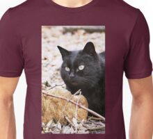 """""""Head-Bent"""" Pussy Rue (hidden behind a stone !), And I in birds tuned! but not in the same place for I  3 h) by Olao-Olavia / Okaio Créations  by fz 1000 2014 Unisex T-Shirt"""