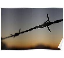 Along the Barbed Wire Fence Poster