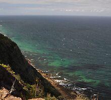 Otford Lookout, Royal National Park, Australia 2013 by muz2142