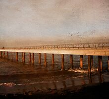 Perspective - Days Gone By by Chris Armytage™