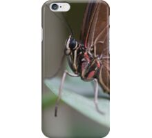 butterfly on the flower iPhone Case/Skin