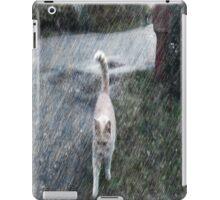 The Orange cat iPad Case/Skin