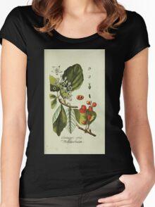 Plantarum Indigenarum et Exoticarum - Lukas Hochenleitter und Kompagnie 1788 - 084 Women's Fitted Scoop T-Shirt