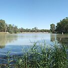 Magic Of The Mighty Murray - Loxton - South Australia by Dwayne Madden
