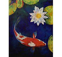 Kohaku Koi and Water Lily Photographic Print