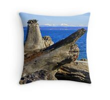 """Driftwood"" Throw Pillow"