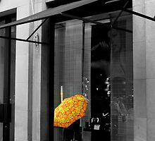 Window Shopper (NYC) by BGpix