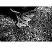 untitled #129 Photographic Print