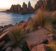 The Pinnacles by Travis Easton