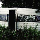trailer park blues by Bronwen Hyde