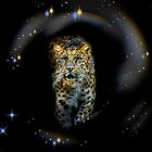 night stalker by deltadawn