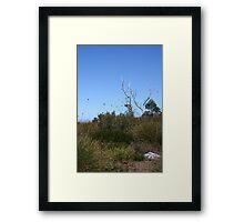 Button Grass Plains Framed Print
