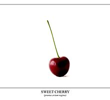 Cherry Labeled by Alan Harman
