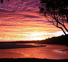 Sawtell Sunset1 by xaxisycross