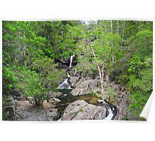 Rainforest Interlude Poster