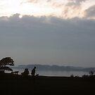 Evening stroll by nealbarnett