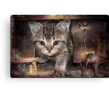 Who lives here Canvas Print
