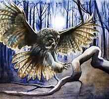 Night Owl by Heidi Cooper Smith