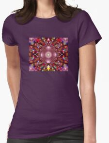 a saucerful of secrets Womens Fitted T-Shirt